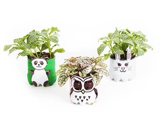 Posodica za rastline